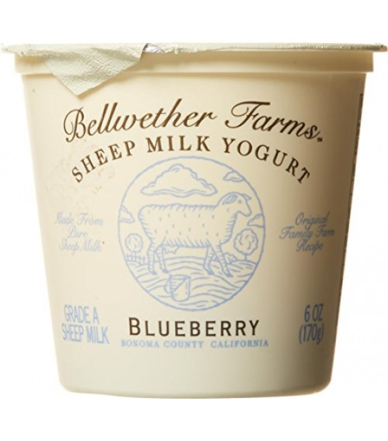 [Bellwether Farms] Sheep Milk Yogurt Bluberry